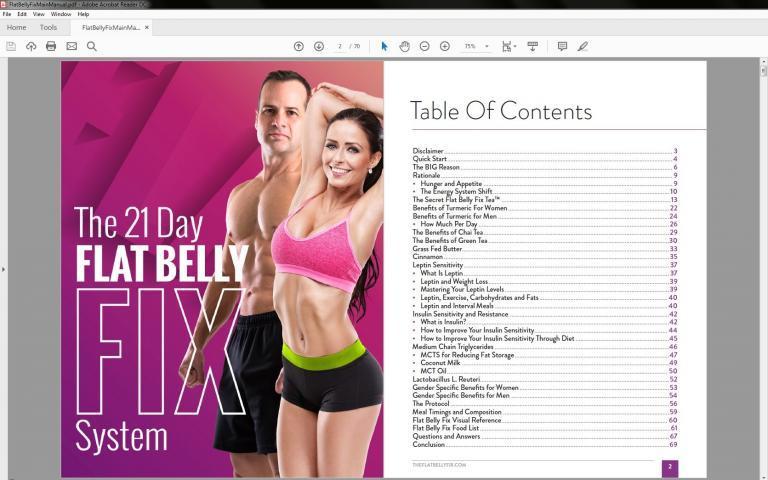 Flat Belly Fix guide